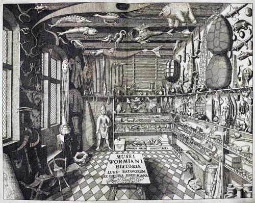 圖一:Museum Wormianum一書的首頁,主題為丹麥醫師與收藏家 Ole Worm (1588-31 August 1654) 的「驚奇屋」。