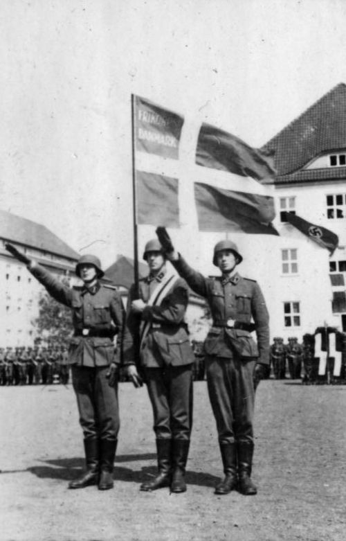 17_Bundesarchiv_Bild_101III-Weill-096-27,_Deutschland,_Vereidigung_von_Dänen