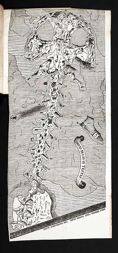 圖七:「創世紀洪水的目擊者」。