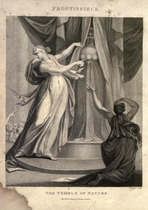 圖5 《自然的神殿》中關於戴安娜的描繪 。