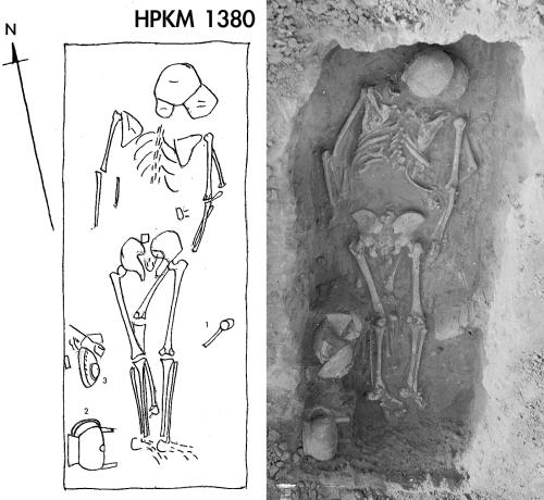 Plate 13-HPKM 1380